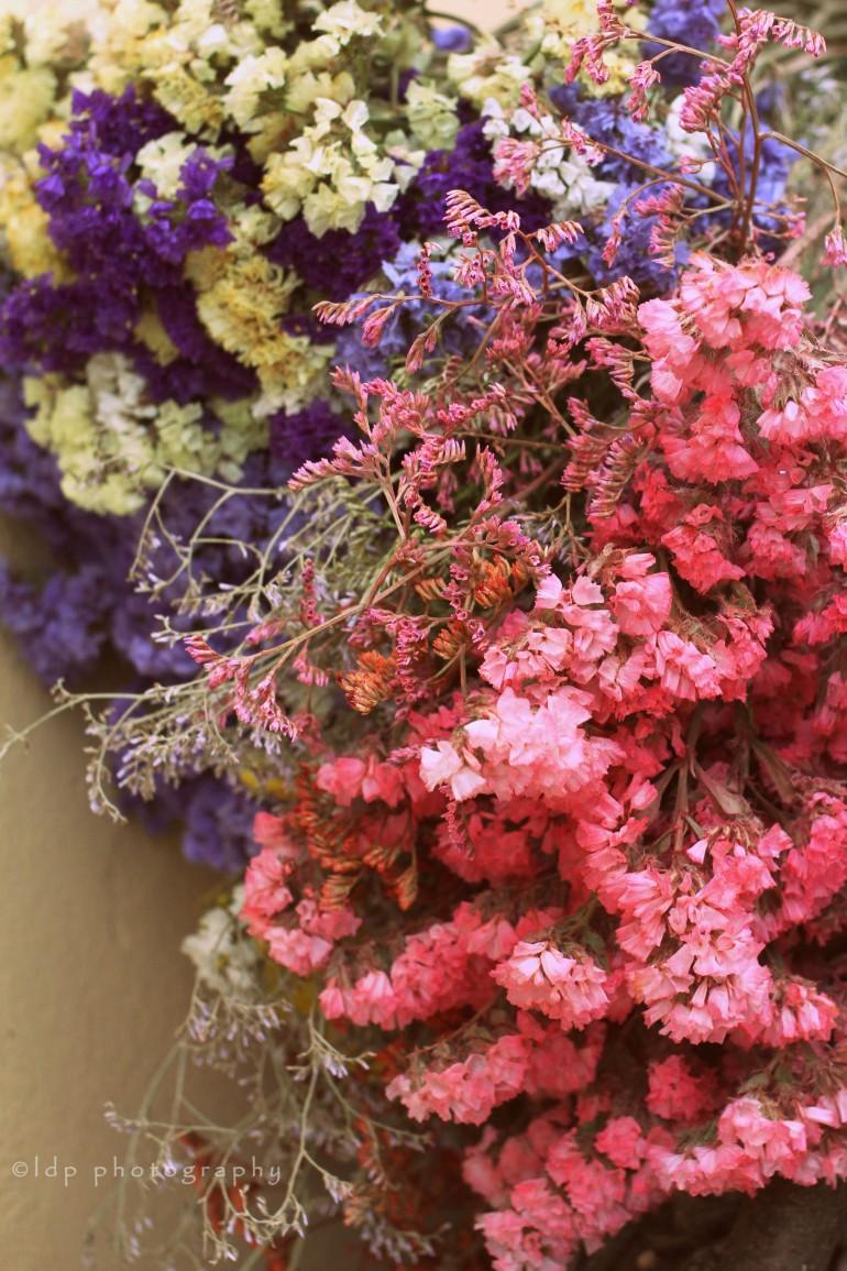 flowersglowWM