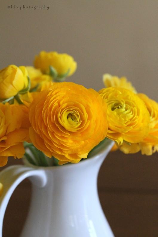 yellowflowers1WM