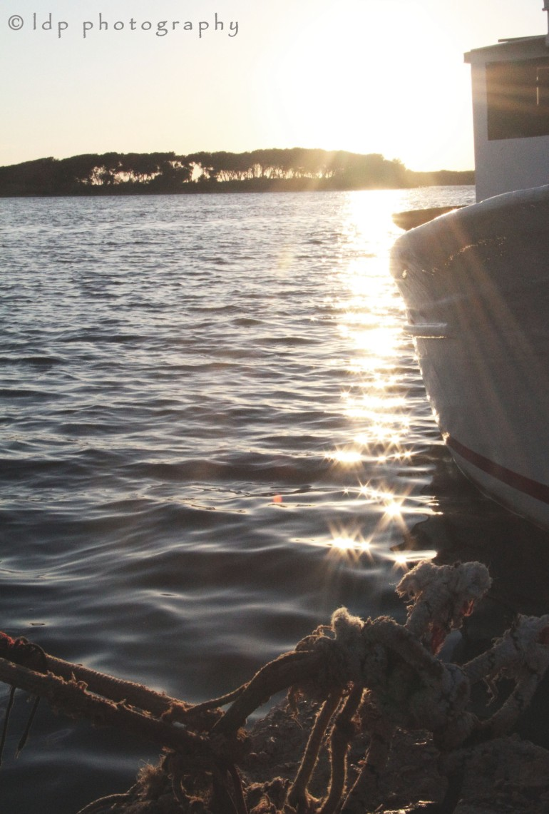 portocesareoboatWM