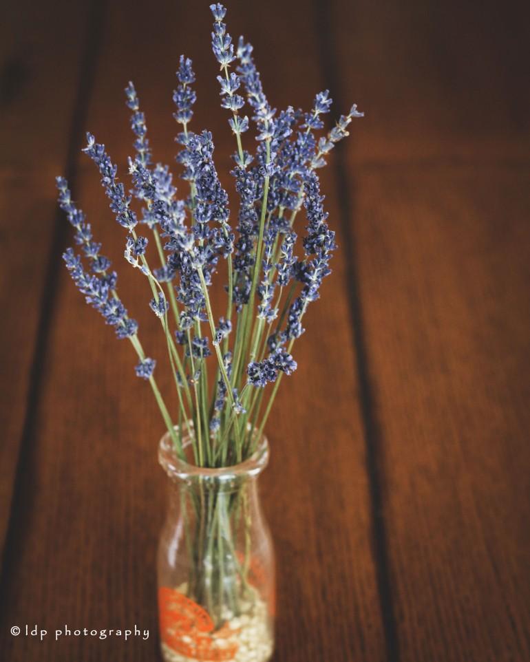lavenderverticalIGWM
