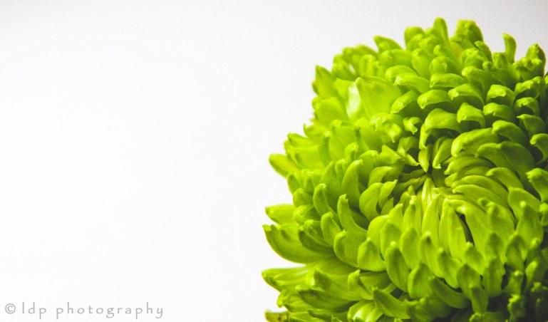 greenflowerWM